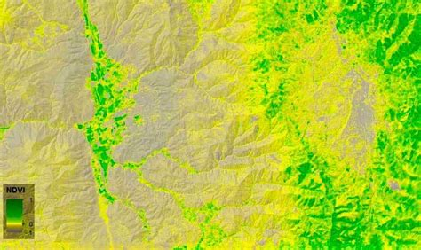 Calculating Normalized Differential Vegetation Index (NDVI