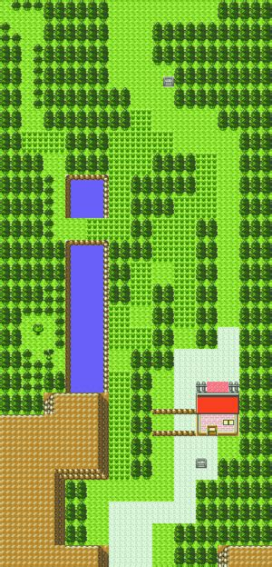 Pokémon Gold and Silver/Route 43 — StrategyWiki, the video