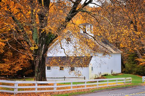 white-barn-new milford-Connecticut-pastoral-fall-foliage